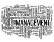 """Nuage de Tags """"MANAGEMENT"""" (équipe ressources humaines gestion)"""