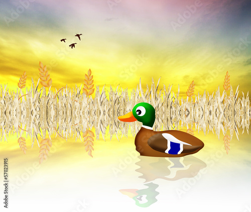 Leinwanddruck Bild Mallard cartoon