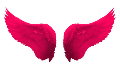pink wing