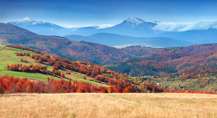 Colorful autumn panorama of the mountain village