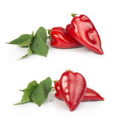 Red peppers and leaves