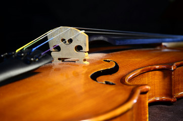 Violin bridge-angle