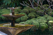 Square fountain in an Asian garden - 57039781