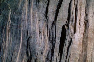 Sfondo di legno grezzo