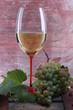 bicchiere di vino bianco con uva su tino