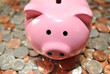 Pink Piggy Bank on American Coins