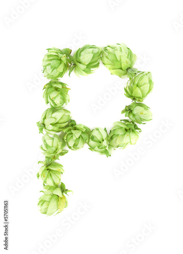 Hop flowers as letter P.