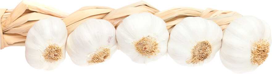 garlic plait isolated on white
