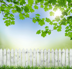 springold white fence
