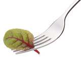 Fresh mangold salad on fork isolated on white background cutout.
