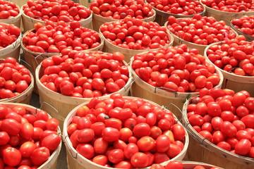 Tomato Bushels 1