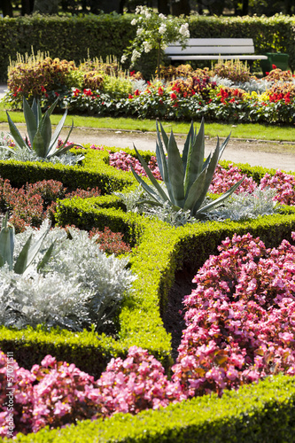 Garden flower in the park, grow agave and pink flowers.