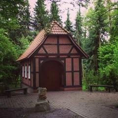 Waldhütte mit Stil