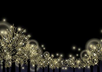 冬の夜を彩る街路樹のイルミネーション