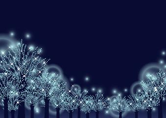 冬の夜を彩る街路樹のブルーイルミネーション