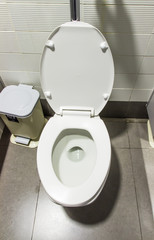 White flush toilet and lavatory pan