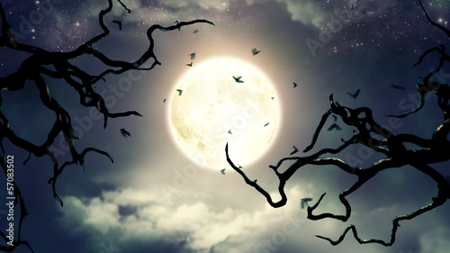 Flying bats in the light of spooky Moon - LOOP