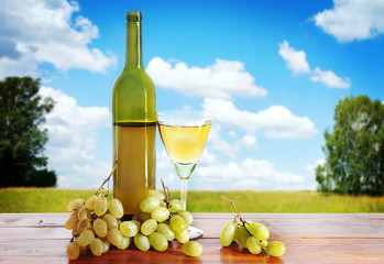 Bottle of wine and grape bunches against summer landscape