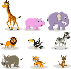 vector illustration of cute animal wildlife cartoon collection