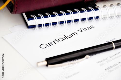 curriculum vitae or resume - 57089542