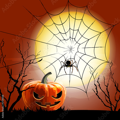 spiderweb vector background