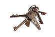 bunch of old keys on white background