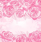 Beautiful rose design background