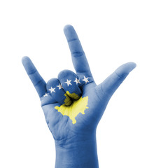 Hand making I love you sign, Kosovo flag painted