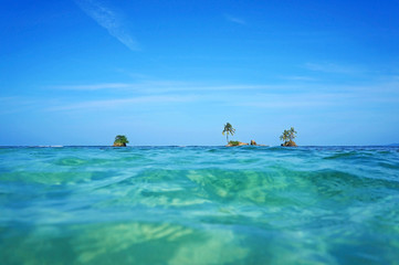 Horizon over water with islets and coconut tree