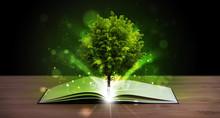 Ouvrir le livre avec l'arbre vert magique et des rayons de lumière