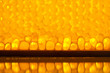 natural honeycomb texture, macro view