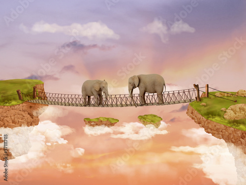 Two elephants on a bridge in the sky