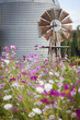 Antique Farm Windmill and Silo in a Flower Field.