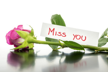 Rose with Miss you card
