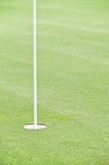 Golf hole with flag stick.