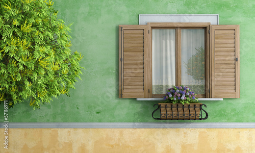 old house with tree and flower pot