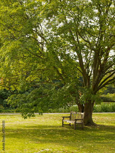 Parco a Londra con panchina