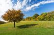 Landschaft im Herbst