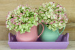 two coffee mugs filled with hydrangea