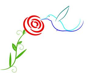 Kolibri mit Rose