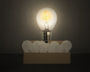Big glowing light bulb with money symbol float over opened cardb