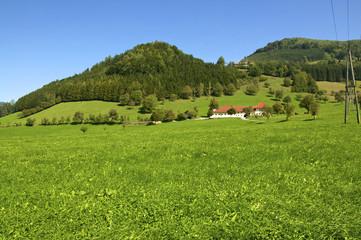 Landschaft mit Bauernhof im Ennstal in Großraming