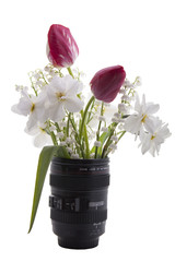 the spring flowers are in a vase on a white background