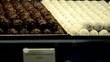 Pralinen und Schokolade