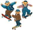 スケートボード クマ