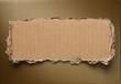 Torn cardboard background