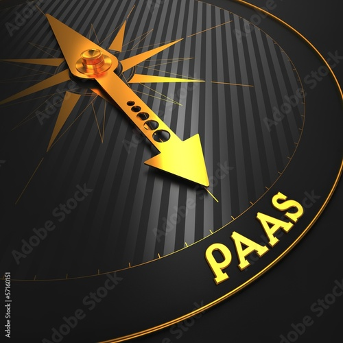 PAAS. Information Technology Concept.