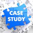 Case Study on Blue Puzzle Pieces.