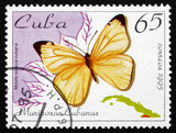 Postage stamp Cuba 1995 Black-striped White, Butterfly
