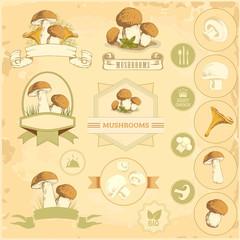 mushrooms, vegetables labels, food product packaging design